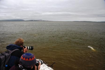Katya (Heritage expeditions) and Ksenia photographing Beluga. Anadyr is across the river (c) Liz Brown