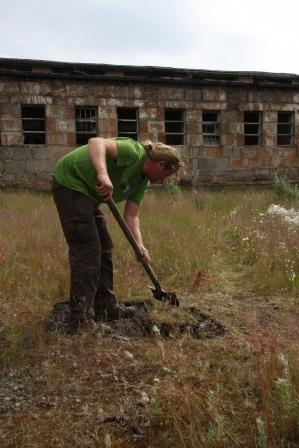 Roland digging turf (c) Liz Brown