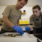 Nigel Jarrett and Nicky Hiscock with the Spoon-billed Sandpiper eggs after arrival (Sacha Dench)