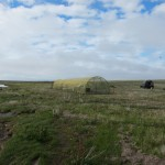 The rearing aviary and release site Meinypilg'yno, Chukotka (c) Nicky Hiscock