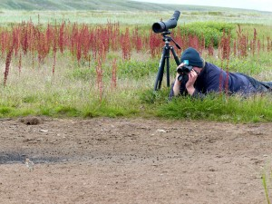 WWT's Roland Digby  in the field in Chukotka using Leica optics