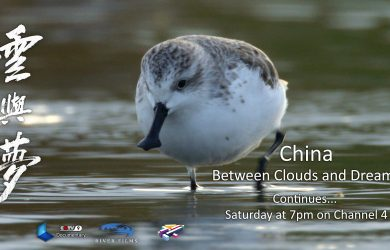 China: Between Clouds and Dreams continues on Channel 4 on Saturdays at 7pm