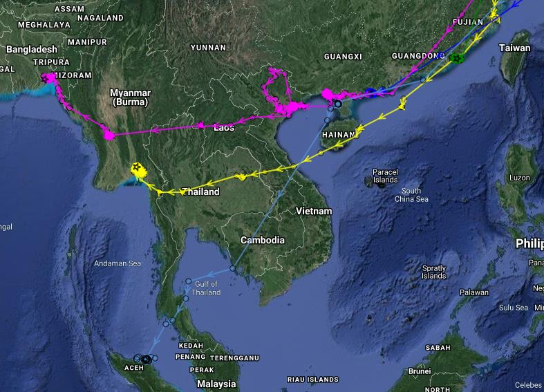 Wintering locations of five previously tagged spoonies