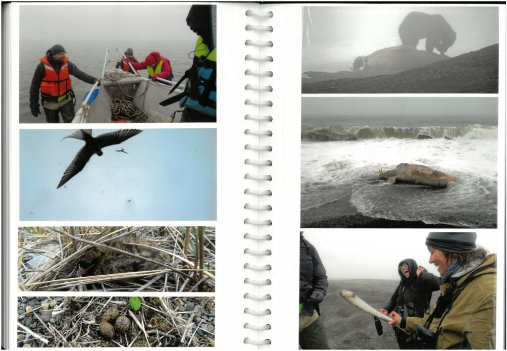 10. Coastal spit recon. Who can guess the item Elena is holding in the bottom right photo?