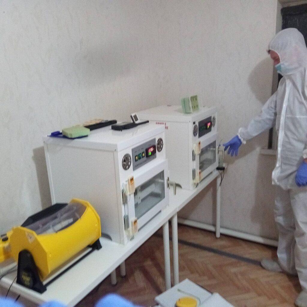 Ivan tending to the incubators. Photo bu Nikolay Yakushev.
